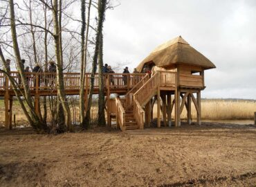 Llangorse Lake Bird Hide – Live Build 2011