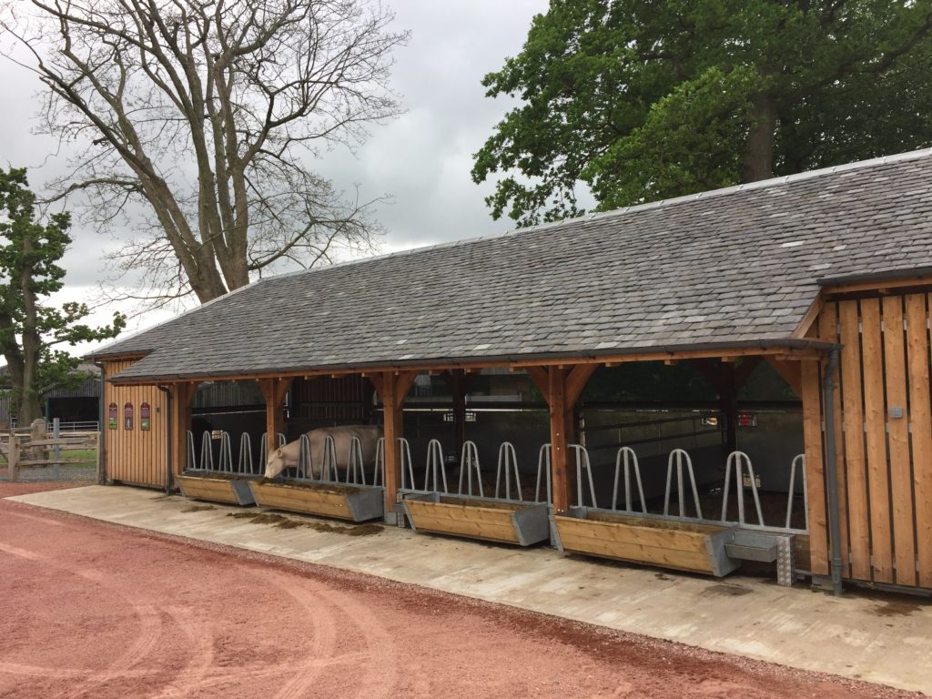 Timber framed agricultural building - cow shed at Dumfries House.